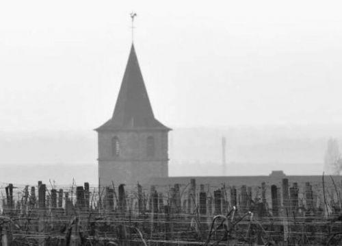奇梦酒庄(Domaine Mongeard Mugneret)