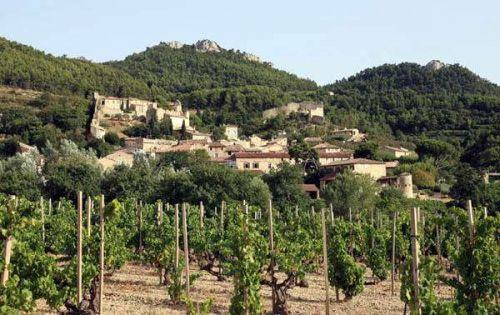 法国瓦给拉斯(Vacqueyras)产区
