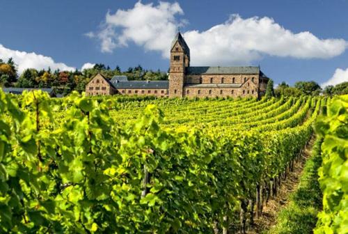 圣地酒庄(Vina Caliterra)
