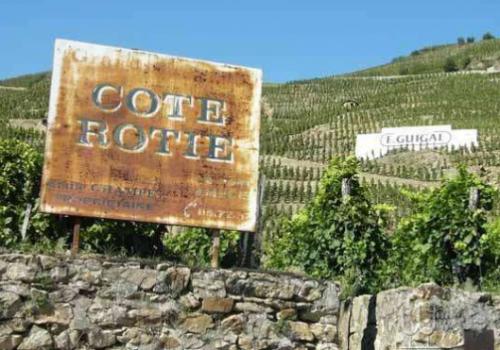 法国罗第丘(Cote Rotie)产区