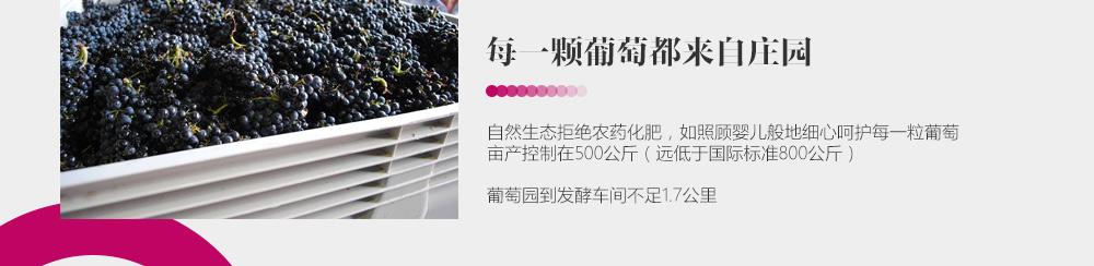 新疆芳香庄园酒业股份有限公司