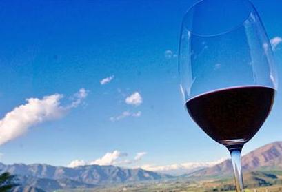 中国成为智利葡萄酒的最大出口市场