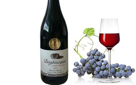 """""""红葡萄品种之后""""——黑皮诺"""