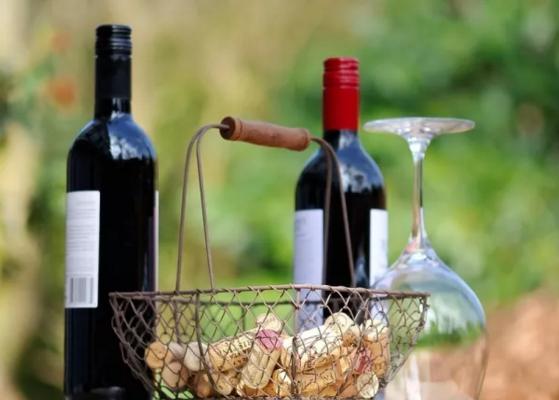 初识葡萄酒的N个误会