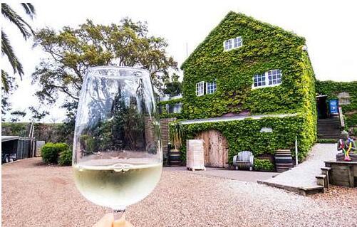 新西兰葡萄酒怎么样?新西兰葡萄酒排行榜