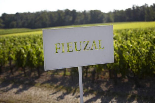 由于今年霜冻的关系,斐泽酒庄不会发售2017年份葡萄酒