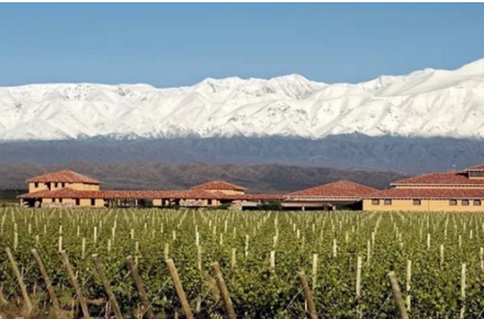 世界最长山脉脚下的葡萄酒,你一定闻所未闻