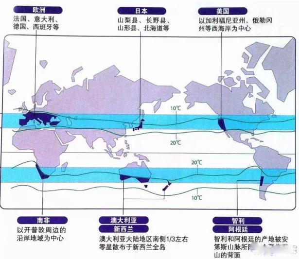 中国最受欢迎的进口葡萄酒产地, 你知道是哪个吗?