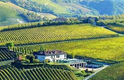意大利葡萄酒三大常识