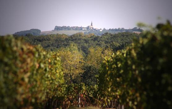 霍玛涅酒庄(Domaine Roumagnac)