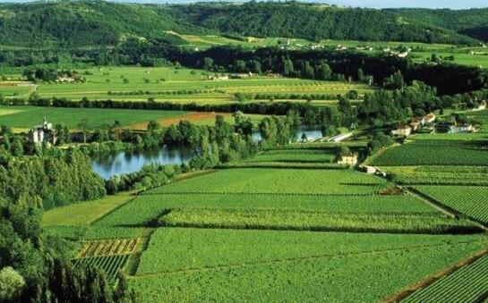 法国卡奥尔(Madiran)产区