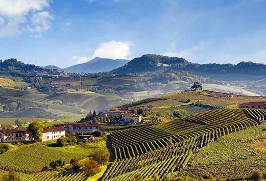 意大利巴巴莱斯科(Barbaresco)产区:皮埃蒙特地区的重要产区