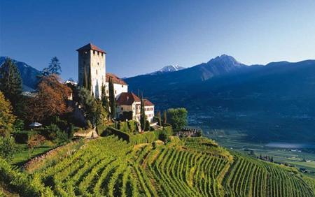 意大利阿斯蒂(Asti)产区