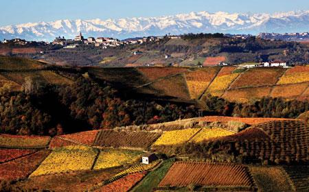 意大利罗埃罗(Roero)产区