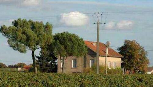 chateau红酒是什么意思?酒标有chateau这个词就是好红酒吗?