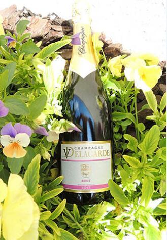 德拉加德香槟(Champagne V.Delagarde)
