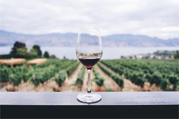 2018年葡萄酒行业将出现七大新趋势