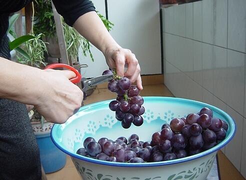 家庭自酿葡萄酒做法,家庭酿制葡萄酒设备购买