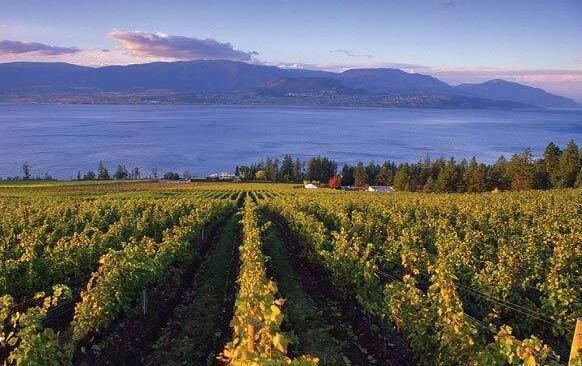 加拿大不列颠哥伦比亚(British Columbia):加拿大的重要产区