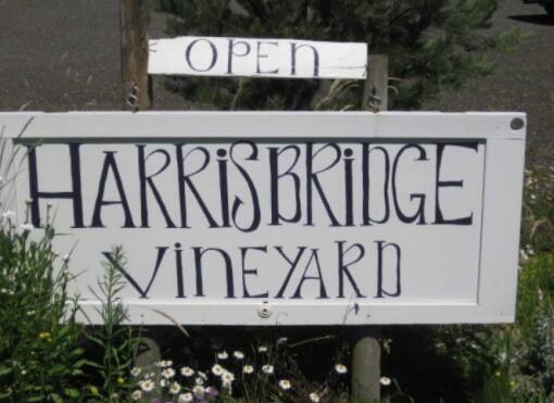 哈里斯桥酒庄(Harris Bridge Vineyard)