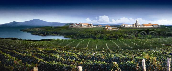 蓬莱市创建优质葡萄酒产品生产基地