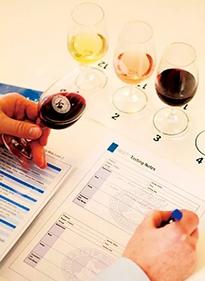 中国葡萄酒市场存在以下十大方面的误读