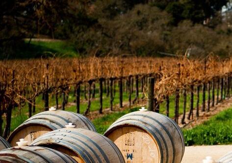 维克多·雨果酒庄(Victor Hugo Winery)