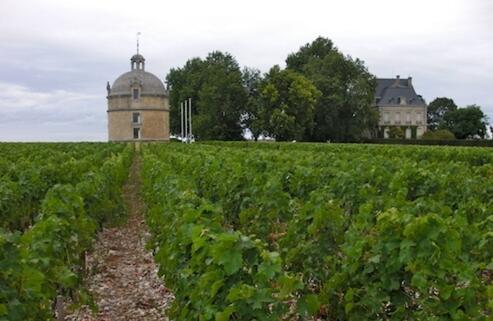 拉图酒庄将在下周发售两款葡萄酒