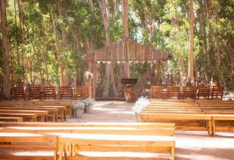 艾力斯佛羅倫酒莊(Allesverloren):南非古老酒莊
