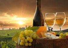 中奥塔哥是盛产黑比诺葡萄酒的美景胜地,你知道吗?