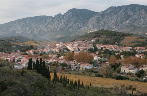 柏圖伊桑酒莊(Domaine de la Pertuisane)