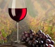 葡萄酒中的神秘成分,你了解吗?
