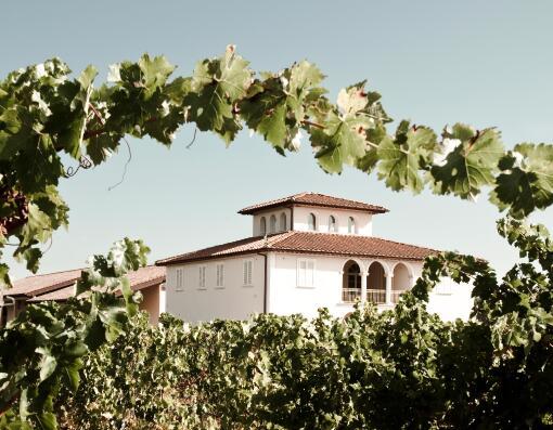 卡斯特拉尼酒庄(Castellani)