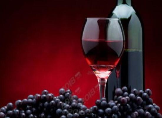 全面认识葡萄酒的魅力