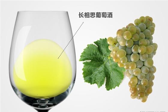 品鉴葡萄酒的4S法则 你了解吗?