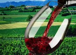 烛光晚餐的5款最佳饮用葡萄酒,你知道吗?