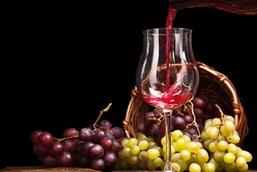 8个葡萄酒旅游时的注意要点,你知道吗?