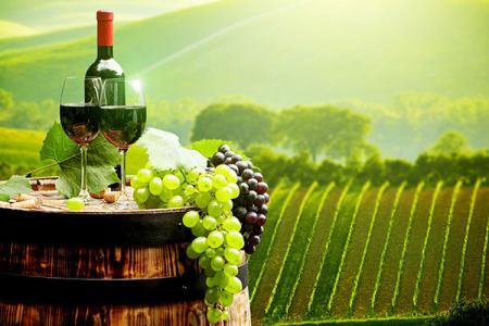 葡萄酒风格轻松学品鉴 你懂的吗