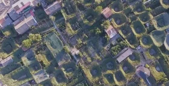 河北宣化葡萄架型成为全球最重要农业文化遗产