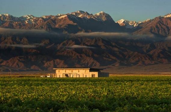 阿根廷葡萄酒 盘点阿根廷葡萄酒代表产区