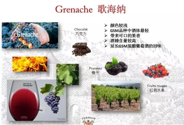 5月18-20日宁波唯尊贸易有限公司带您发现罗纳河谷产区的特色风土和精品美酒