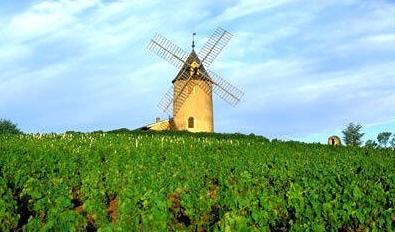 法国博若莱红酒 除了新酒博若莱还有什么