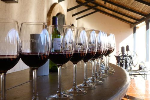 喝不同的酒 应该怎么拿杯子?