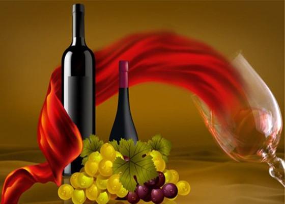 """有关法国酿酒理念""""让自然来酿酒""""的理解"""