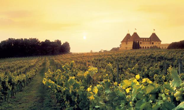 细说法国卢瓦尔河葡萄酒产区(下)