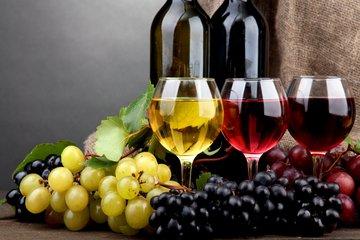 刚入葡萄酒界就要懂这些知识
