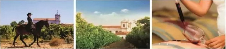 酒庄游·Interwine召集令|除了精彩纷呈的酒庄游,还要和葡萄牙总统会面