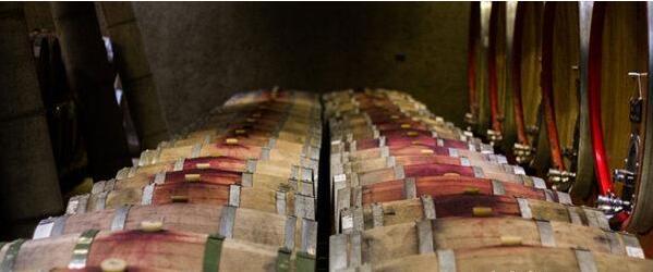 中美贸易战有利于智利葡萄酒继续扩大中国市场份额
