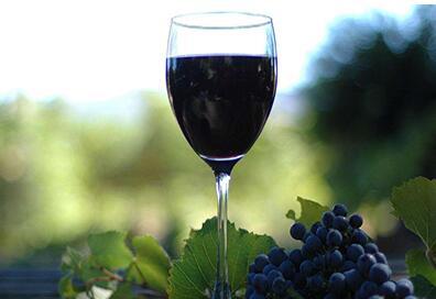 宁夏吴忠市红寺堡区葡萄酒推介会日前在泉州举行