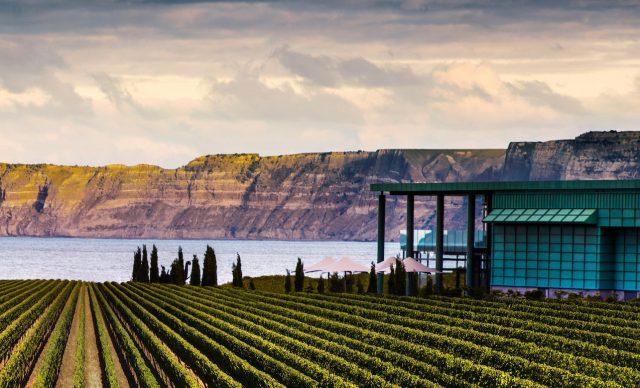 新西兰葡萄酒种植协会将举办2019年侍酒师奖学金活动